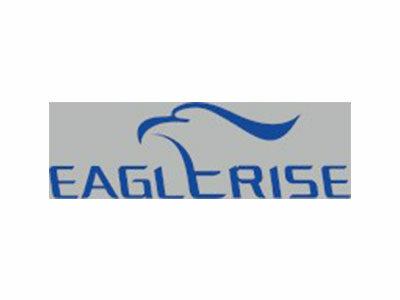 Logo Eaglerise